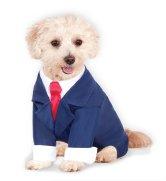 ebay-suit.jpg